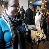 Aimee McFarland, from Tulsa, holds a Barbarie Falcon from South Africa during the Phoenix Quest festivities at Leonardo's Children's Museum and Adventure Quest Saturday, Nov. 23, 2013. The Barbarie Falcon is among the endangered species since only 5,000 exist today. (Staff Photo by BONNIE VCULEK)