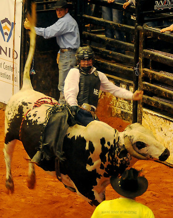 A rodeo bull fighter (bottom) moves in to assist a PBR bull rider during the 2013 Enid PBR Challenge at the Enid Event Center Saturday, Nov. 16, 2013. (Staff Photo by BONNIE VCULEK)