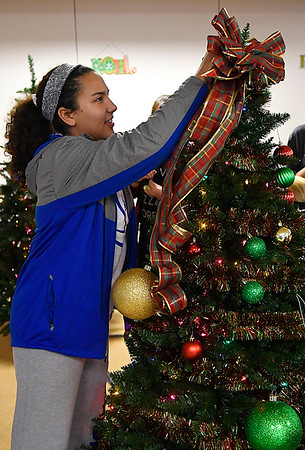 Alexis Peeper puts a ribbon on top of the Drummond FCCLA & Stuco decorated tree during the kickoff of the Salvation Army's Spruce Up a Life Monday November7, 2016 at Oakwood Mall. (Billy Hefton / Enid News & Eagle)