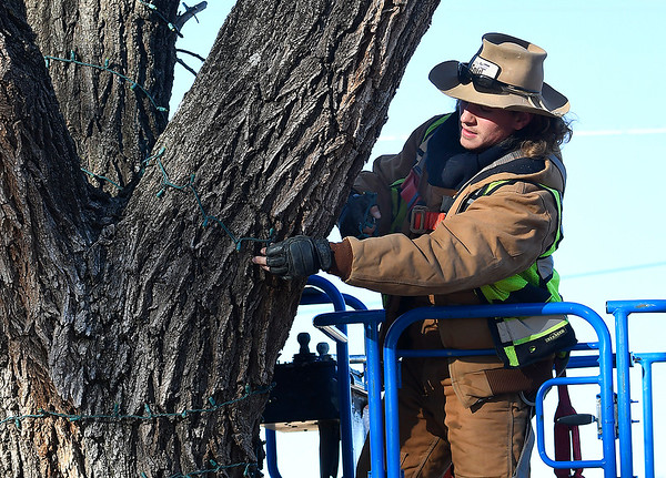 Justin Bailey wraps Christmas lights around a tree at Meadowlake Park Tuesday, November 12, 2019. (Billy Hefton / Enid News & Eagle)
