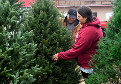 Nastassja and Derrick Gee look over trees at the Copp Forest Products tree lot on west Garriott Friday, November 29, 2019. (Billy Hefton / Enid News & Eagle)