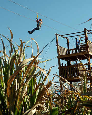 A customer takes a ride on the newly added zip line at Daze in a Maze located south of Covington. (Staff Photo by BILLY HEFTON)