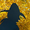 The chuck wagon driver silhouette at Government Springs Park has a colorful background Sunday as leaves begin to turn to their fall color. (Staff Photo by BILLY HEFTON)