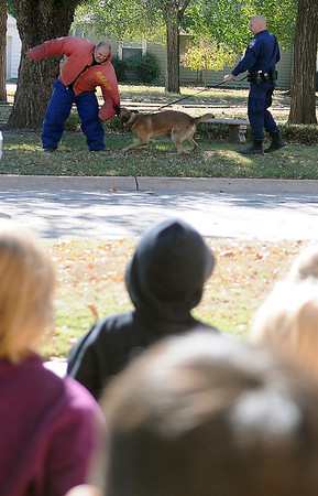 Taft Elementary School students watch from a safe distance (below) as Enid Police Officers Chase Bouziden (left) and Ryan Fuxa (right) demonstrate the powerful bite of Enid K-9 Duko Friday during a Red Ribbon event. (Staff Photo by BONNIE VCULEK)