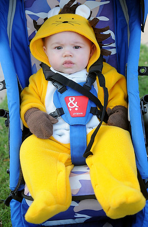 Leo Liddell, son of Craig and Katie Liddell, sports a lion costume during his first Halloween trick or treating at Scare on the Square. (Staff Photo by BONNIE VCULEK)