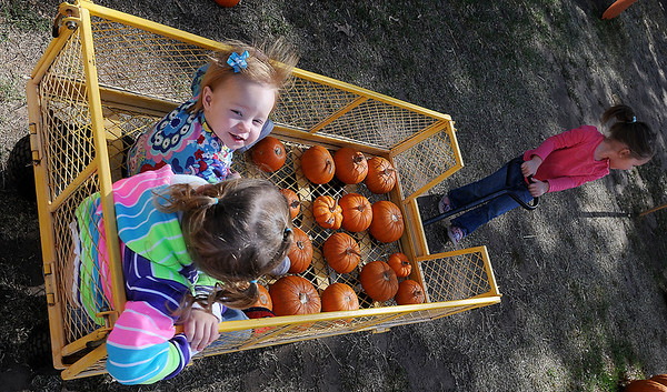 Chesney Wolever (top, left) glances up as she rides in a pumpkin-filled wagon with Ashlynn Parker while Madison Wolever (right) pulls the load at the Pumpkin Patch at Christ United Methodist Church Thursday. (Staff Photo by BONNIE VCULEK)