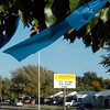 A blue ribbon hangs from a tree outside Hoover Elementary Monday as the school celebrated being named a National Blue Ribbon School by the US Department of Education. (Staff Photo by BILLY HEFTON0