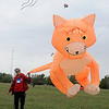 "Marti Dermer, from Stillwater, grabs her Peter Lynn ""Cat"" kite by its tale Thursday during the American Kitefliers Association National Convention. The unique kite was designed and created in New Zealand. (Staff Photo by BONNIE VCULEK)"