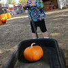 Little Chesney Wolever concentrates as she pulls her own pumpkin around Christ United Methodist Church's Pumpkin Patch Thursday. (Staff Photo by BONNIE VCULEK)