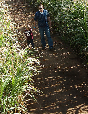 Billy Miller leads Elijah Miller through the maze at Daze in a Maze located south of Covington. (Staff Photo by BILLY HEFTON)