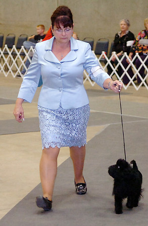 Stephanie Hill shows her affenpinscher, Hatti, Sunday during the Sooner State Kennel Club Dog Show at the Chisholm Trail Expo Center. (Staff Photo by BILLY HEFTON)