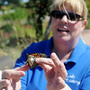 Connie Hood releases a tagged Monarch during Monarch Watch at Dillingham Gardens Tuesday, Oct. 1, 2013. (Staff Photo by BONNIE VCULEK)