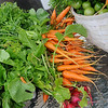 Bunches of sweet carrots, radishes, peppers, tomatoes, greens and herbs await purchase at Faith Farm Tuesday, Oct. 29, 2013. (Staff Photo by BONNIE VCULEK)