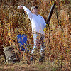A Super Retriever Trial Series official tosses a bird into bush during the trial series 1 competition at The Sportsman's Ranch in Hillsdale, Okla. Thursday, Oct. 3, 2013. (Staff Photo by BONNIE VCULEK)