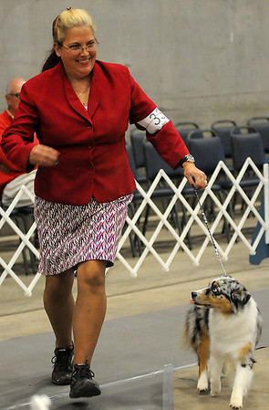 Kari Smith, from Blanchard, reacts as Prodigys She Wore Blue Velvet, a miniature American Shepherd owned by Kayvonne Primm and Lyndsi Guillien from Kailua Kona, Hawaii, wins Best of Breed during the Sooner State Kennel Club Dog Show at the Chisholm Trail Coliseum Saturday, Oct. 12, 2013. (Staff Photo by BONNIE VCULEK)
