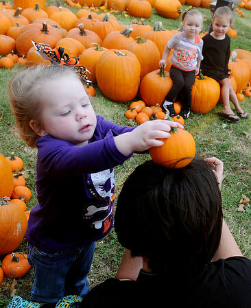 Faithlynn Hagermann, 2-year-old daughter of Brittney and Nate Hagermann, places a pumpkin on the head of photographer, Natosha Smith, as Smith snaps shots of Hagermann and her cousins at Christ United Methodist Church's Pumpkin Patch Thursday, Oct. 3, 2013. (Staff Photo by BONNIE VCULEK)