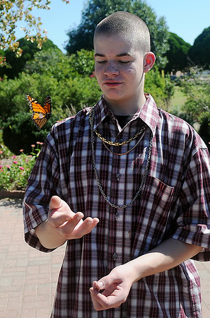 Kristiaan Ornder releases one of the tagged Monarch butterflies that he netted during a Lincoln Middle School scientific research trip to Dillingham Gardens Tuesday, Oct. 1, 2013. Monarchs were netted, identified by gender, tagged, and released during Monarch Watch for Kansas University. (Staff Photo by BONNIE VCULEK)