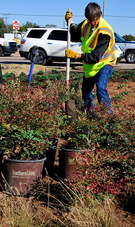 Phillip Runco III digs a hole for shrubbery on the northwest corner of Van Buren and Willow Wednesday. The city is landscaping three of the four corners of the intersection. (Staff Photo by BILLY HEFTON)