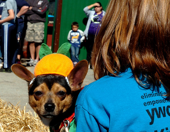 Cosmo looks around the shoulder of Ashlyn Manning during judging Sunday in the annual Atwoods pet costume contest. (Staff Photo by BILLY HEFTON)