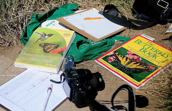Documenting scientific data during the Monarch Watch with Kansas University is essential each year for George Ann Ford, a retired professional educator who taught at several Enid Public Schools. (Staff Photo by BONNIE VCULEK)