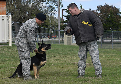 Tech Sgt. Shawn Brundzo holds his dog, Rea, as Senior Airman Roger Shaw wears a bite suit during a demonstration Friday October 14, 2016 at Vance Air Force Base. (Billy Hefton / Enid News & Eagle)