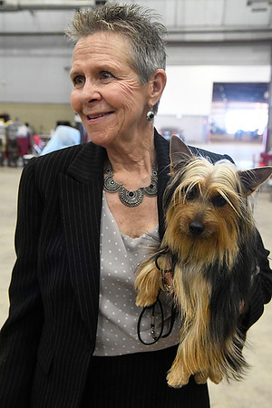 Pam Gates holds her silky terrier, Ebony and Ivory, during the Sooner State Kennel Club Dog Show at the Chisholm Trail Expo Center Saturday October 14, 2017. (Billy Hefton / Enid News & Eagle)