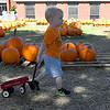 Griffin Buhrke pulls a wagon through the Pumpkin Patch at Christ United Methodist Church Thursday October 12, 2017. (Billy Hefton / Enid News & Eagle)