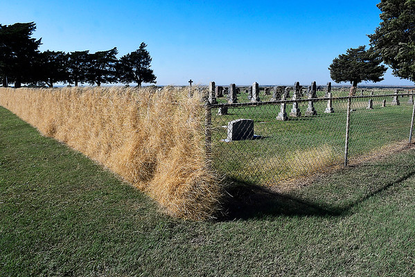 Wind blown weeds cover the south fence of the Breckinridge Lutheran Cemetery Wednesday October 3, 2018. As of 4 p.m. Wednesday the Mesonet station at Breckinridge had recorded a maximun wind gust of 43 mph. (Billy Hefton / Enid News & Eagle)