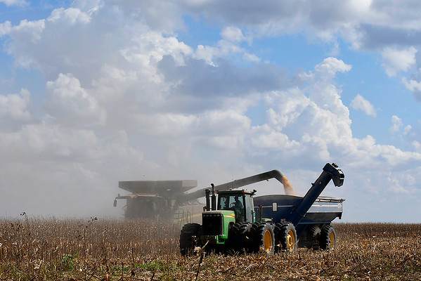 A combine is partially obscured by dust as it harvest a corn field west of Carrier Tuesday October 2, 2018. (Billy Hefton / Enid News & Eagle)