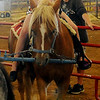 Anna Stotts, from Hennessey, enjoys a pony ride during the Garfield County Free Fair at the Chisholm Trail Expo Center Saturday, Sept. 7, 2013. (Staff Photo by BONNIE VCULEK)