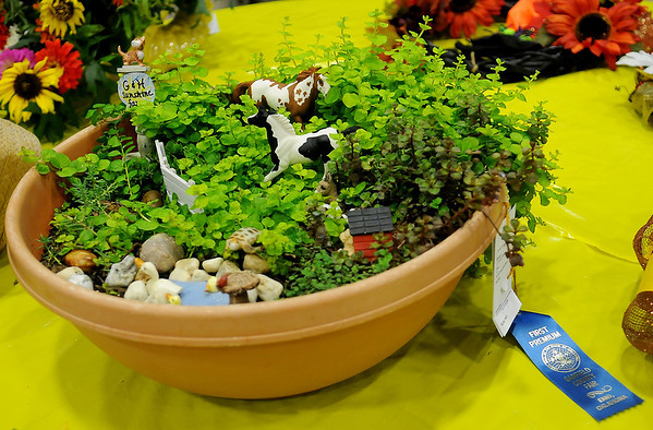 A Junior Division-Flowers Novelty Arrangement with garden flowers, created by Gracie Nunez and her brother, Harry, was one of their Garfield County Free Fair entries that placed first Saturday, Sept. 07, 2013. (Staff Photo by BONNIE VCULEK)