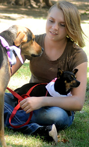 SPCA Grant