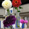 Flower entries at the Garfield County Fair Thursday September 7, 2017 at the Chisholm Trail Expo Center. (Billy Hefton / Enid News & Eagle)
