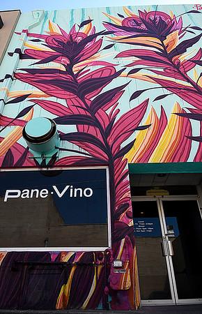 Mural on the back entrance of PaneVino restaurant September 6, 2017. (Billy Hefton / Enid News & Eagle)
