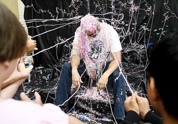 Silly Stringed