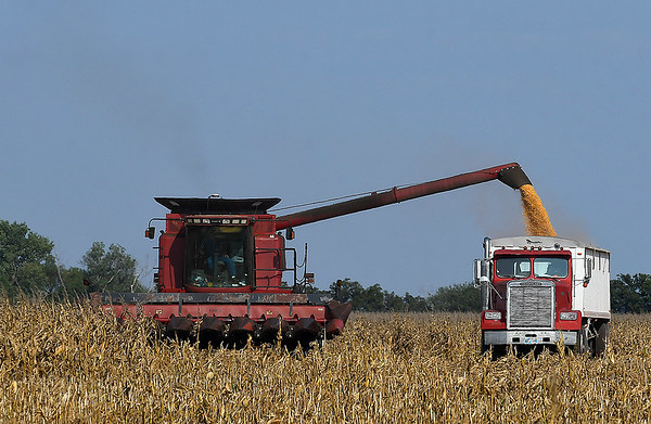 A combine empties corn into a grain truck northeast of Enid Monday, September 21, 2020. (Billy Hefton / Enid News & Eagle)