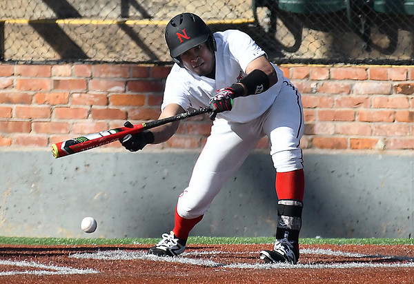 NOC Enid's Juan Sanchez lays down a bunt against SW Iowa Saturday February 18, 2017 at David Allen Ballpark. (Billy Hefton / Enid News & Eagle)
