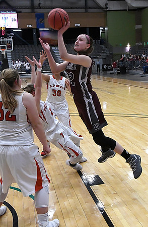 Garber's Jenni Beebe puts up a shot against Texhoma during the Lady Wolverines a 46-45 win over Texhoma in an elimination game of the area playoffs Friday February 23, 2018 at the Central National Bank Center in Enid. (Billy Hefton / Enid News & Eagle)