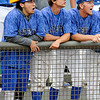 Players from Gateway CC watch a home run by team mate Brady Hettinger against Sinclair CC Thursday June 2, 2016 during the NJCAA DII World Series at David Allen Ballpark. (Billy Hefton / Enid News & Eagle)