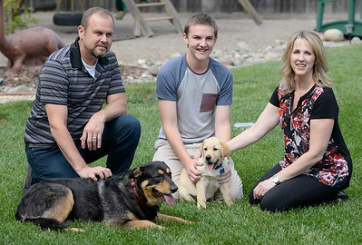 10-week-old yellow lab Enloe makes friends with his new family,  Jeff, Traci and 17-year-old Garrett Hunt and their other dog Bella at their Durham, Calif. home  Tues. April 4, 2017. Enloe will be trained by Dina Zaphiris, founder & CEO, InSitu Foundation as a cancer finding dog. (Bill Husa -- Enterprise-Record)