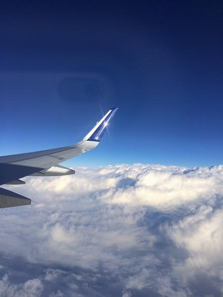 2015-01 Barbados Trip_0603 The Flight Home