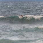 2015-01 Barbados Trip_0303 Surfer at Bathsheba Beach