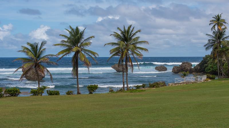 2015-01 Barbados Trip_0321 Bathsheba Beach