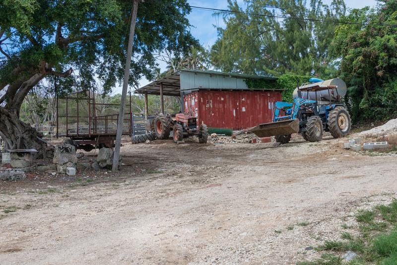 2015-01 Barbados Trip_0301 A Sugar Cane Farm
