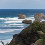 2015-01 Barbados Trip_0306 Bathsheba Beach