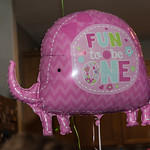 2015-09-17 Maggie's & Winston's Birthday Party_0074