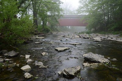 Foggy Creek