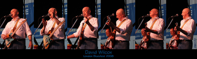 David Wilcox 2008