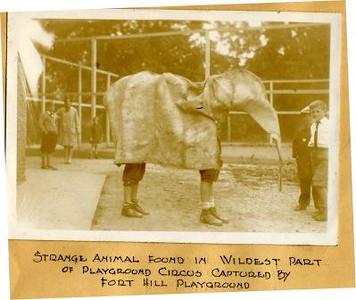 Playground Circus IV (01594)