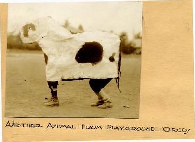 Playground Circus III (01592)